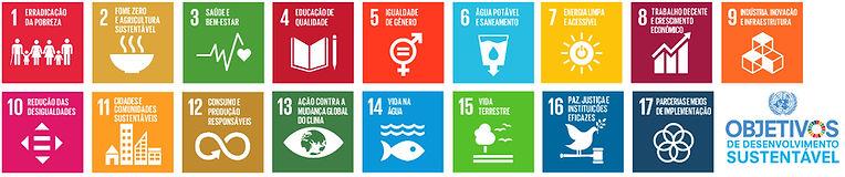 Objetivos de Desenvolvimento Sustentável: 1 – Erradicação da pobreza  2 – Fome zero e agricultura sustentável  3 – Saúde e bem-estar  4 – Educação de qualidade  5 – Igualdade de gênero  6 – Água limpa e saneamento  7 – Energia limpa e acessível  8 – Trabalho decente e crescimento econômico  9 – Inovação infraestrutura  10 – Redução das desigualdades  11 – Cidades e comunidades sustentáveis  12 – Consumo e produção responsáveis  13 – Ação contra a mudança global do clima  14 – Vida na água  15 – Vida terrestre  16 – Paz, justiça e instituições eficazes  17 – Parcerias e meios de implementação