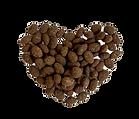 Herb cocoa pumpkin seeds