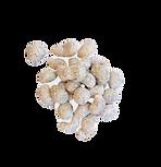 Earl Gray soy cashew nuts