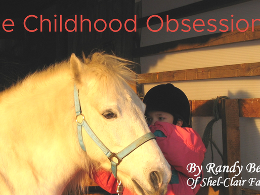 When a Horse is your Obsession