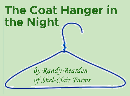 The Coat Hanger in the Night