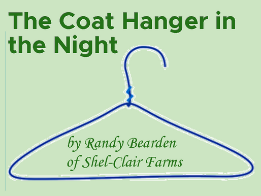 The Coat Hanger in the Night