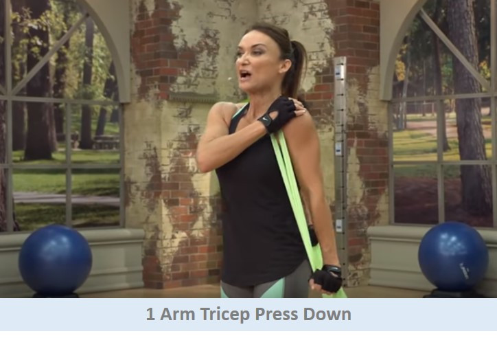 1 Arm Tricep Press Down
