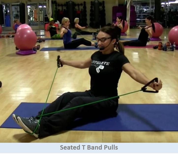 Seated T Band Pulls