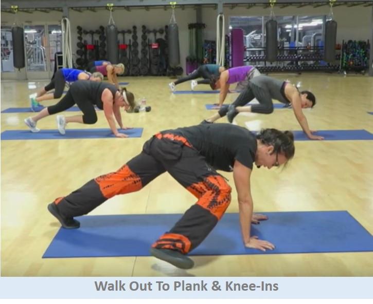 Plank Knee-ins