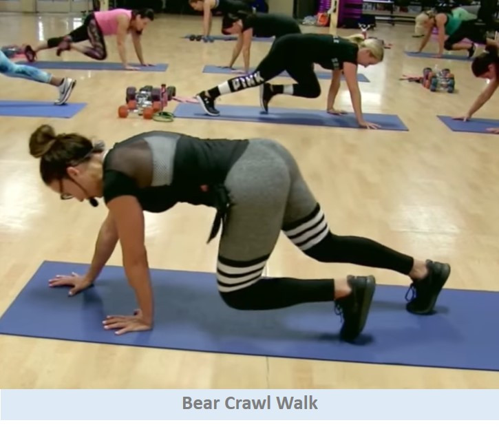 Bear Crawl Walks