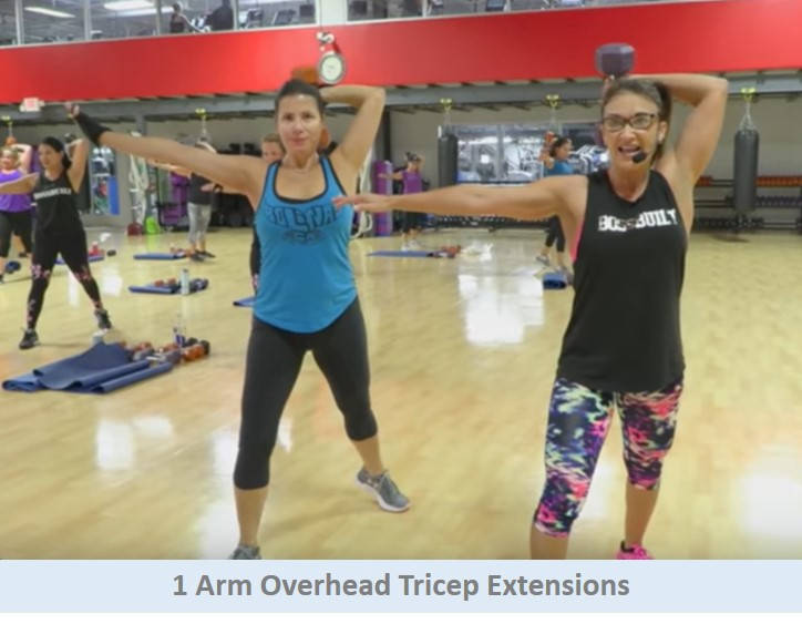 1 Arm Overhead Tricep Extensions