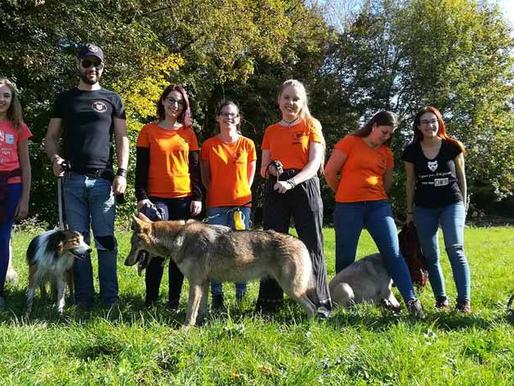 Nouveau module de formation au Dog Center d'Yves-Gomezée !