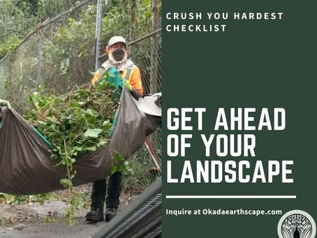 10 Landscaping Tips For Your Home
