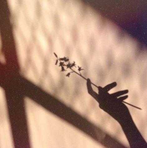 Abraza tus sombras