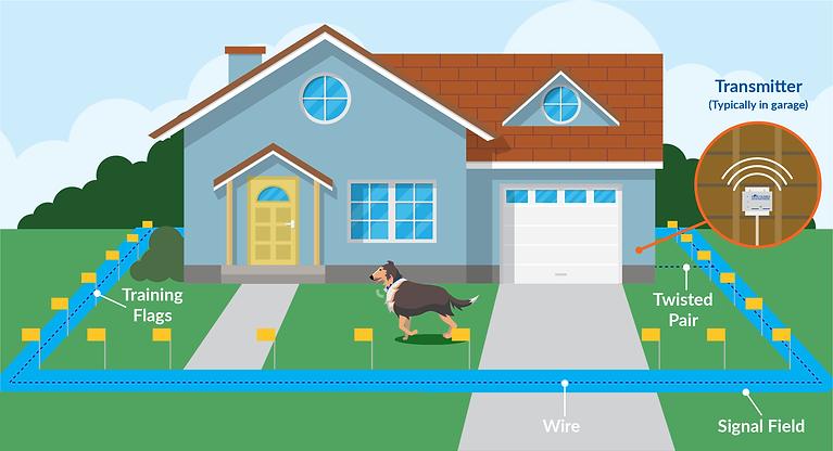 yard-illustration.png