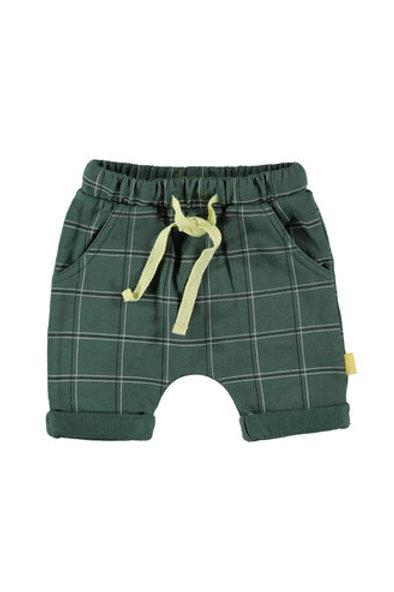 Groen short Check