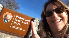 Park #1: Pinnacles National Park