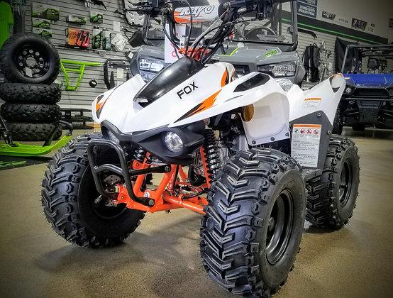 2020 Kayo Fox 70cc