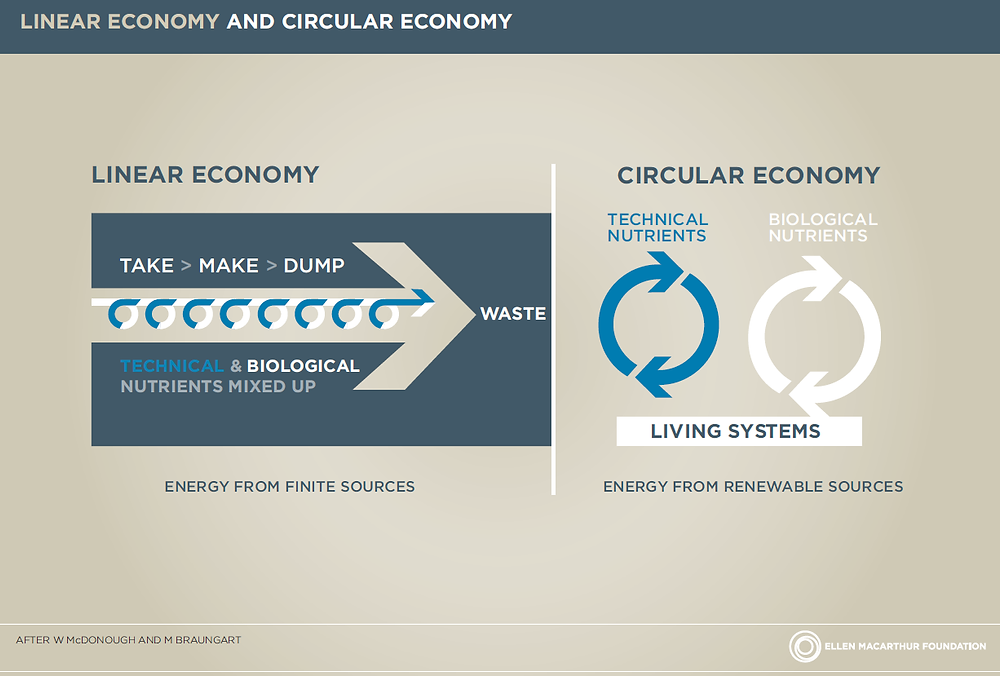 Diferencias entre la economía lineal y circular (Fundación Ellen MacArthur)