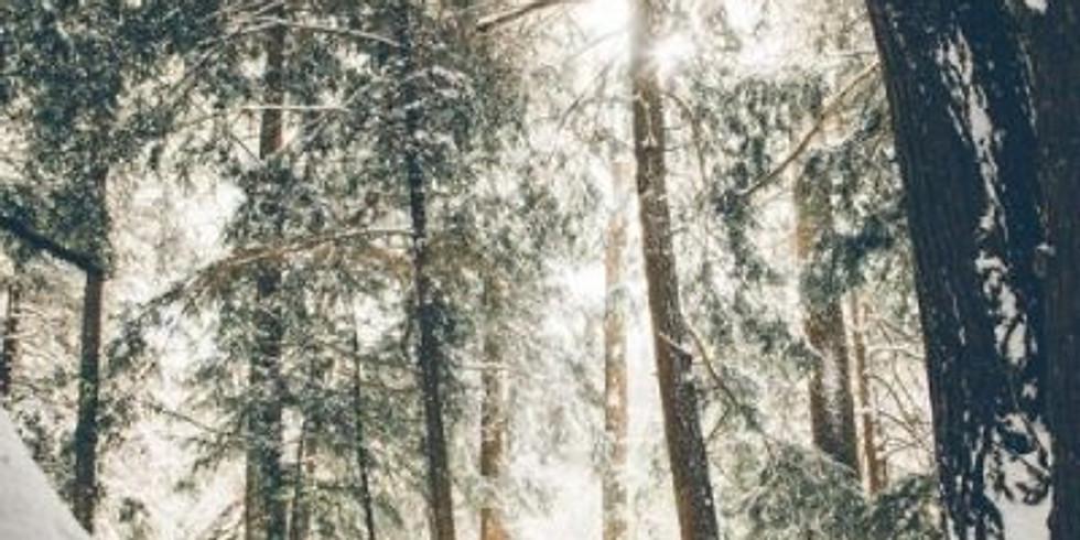 Winter Wonderland New Years Retreat
