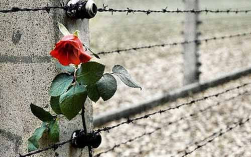 Giornata della Memoria 2019 Cinisello Balsamo