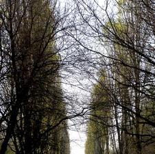 Passeggiando al Parco