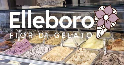 gelateria artigianale elleboro monza