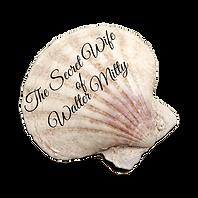 mitty seashell1.png
