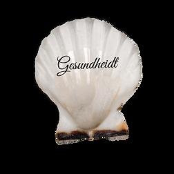 Gesundheit seashell1.png