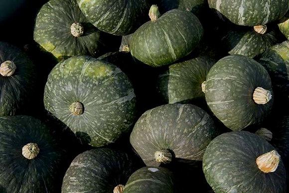 Zucca (Il Melograno Frutta e Verdura)