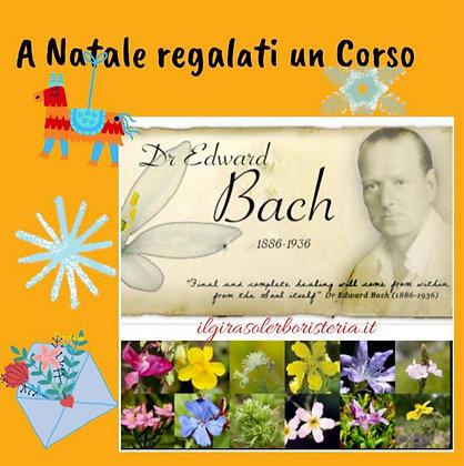 Corso  Fiori di Bach (Il Girasole Erboristeria)