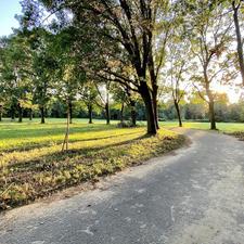 E dietro la curva... - Parco Nord