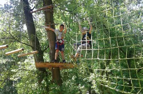 Tree-Experience-Corvetto-milano-cinisellonline