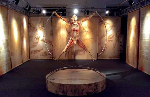 Real Bodies mostra Milano 2018 corpo umano