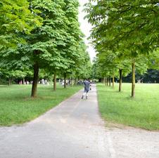 Parco in movimento