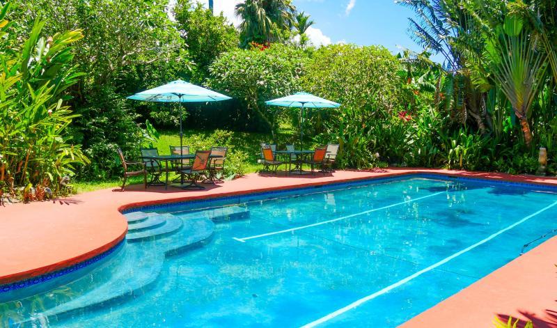 communal lap pool