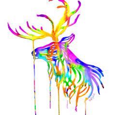 Rainbow Elk