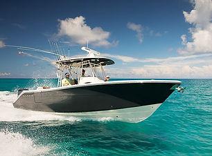 cobia-301-cc-new-boat-spf1217_nbg_2.jpg