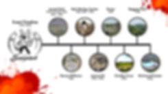 Brand Profile 2.jpg