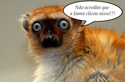Joana_lemur.jpg