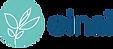 logo-einai-2020-horizontal-tall-transparence-300x130.png