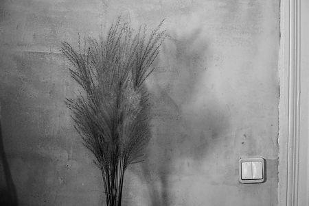 Homestory by PHOTO MOTIF