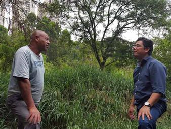Onishi pede e prefeitura de Taboão aciona Justiça para limpar terreno infestado por escorpião