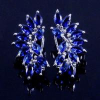 Unicorn Sapphire Cluster Earring