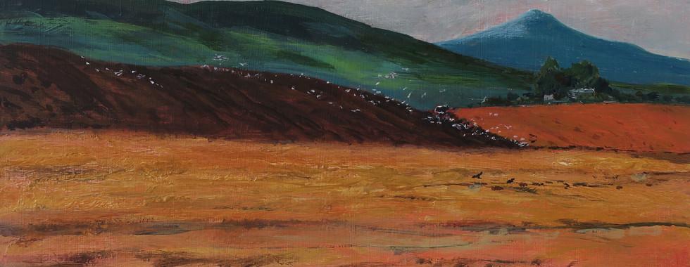 Ploughing in the Pentlands.jpg