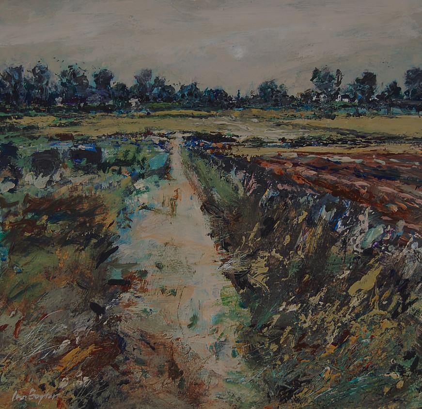 Fields at Kinleth Farm.jpg