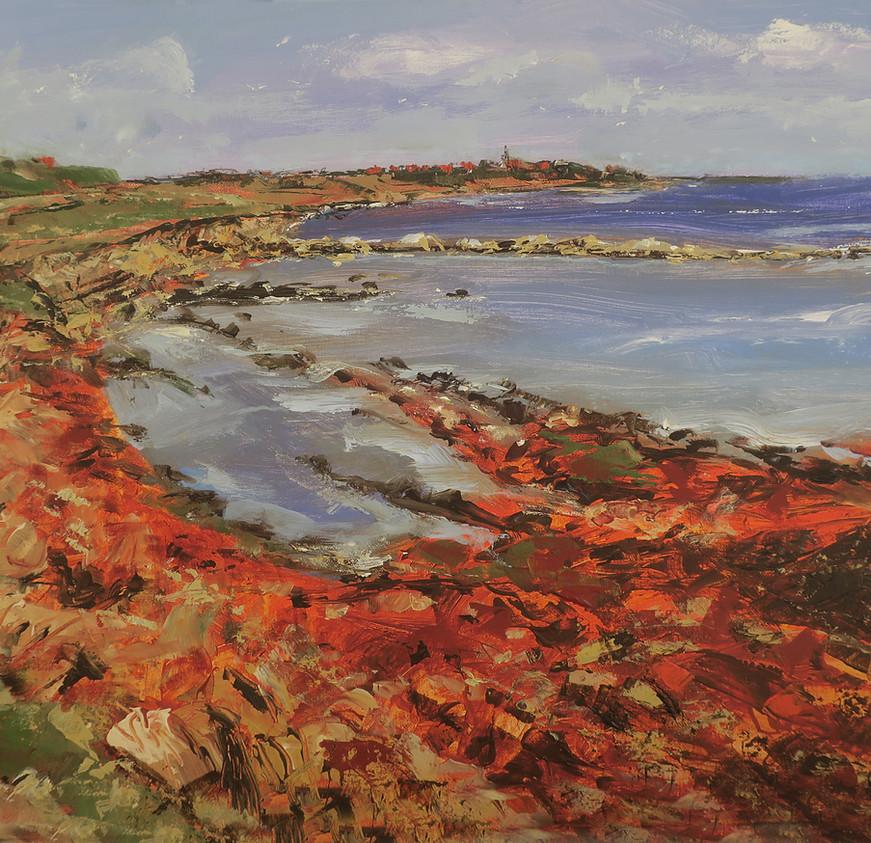 The Coastal Path to Pittenweem.jpg