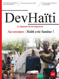 DEVhaiti-24_Page_01.jpg