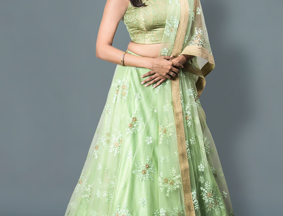 Green Lehnga with Brocade Blouse
