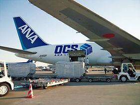 plane-cargo.jpg