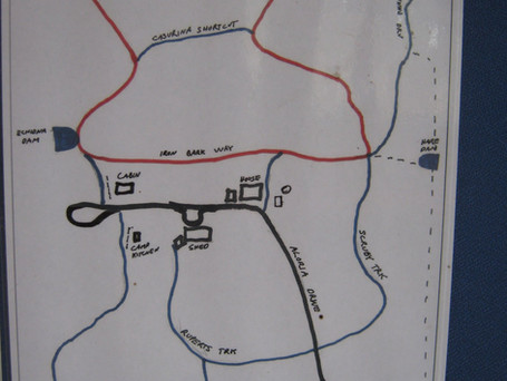 Map/Walking Track