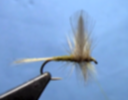 Blue-Winged-Olive-Dry-Fly-Fly-Tying-Video.png