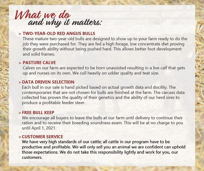 What We Do & Why It Matters.jpg