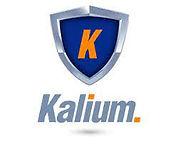 kalium_logo.jpeg